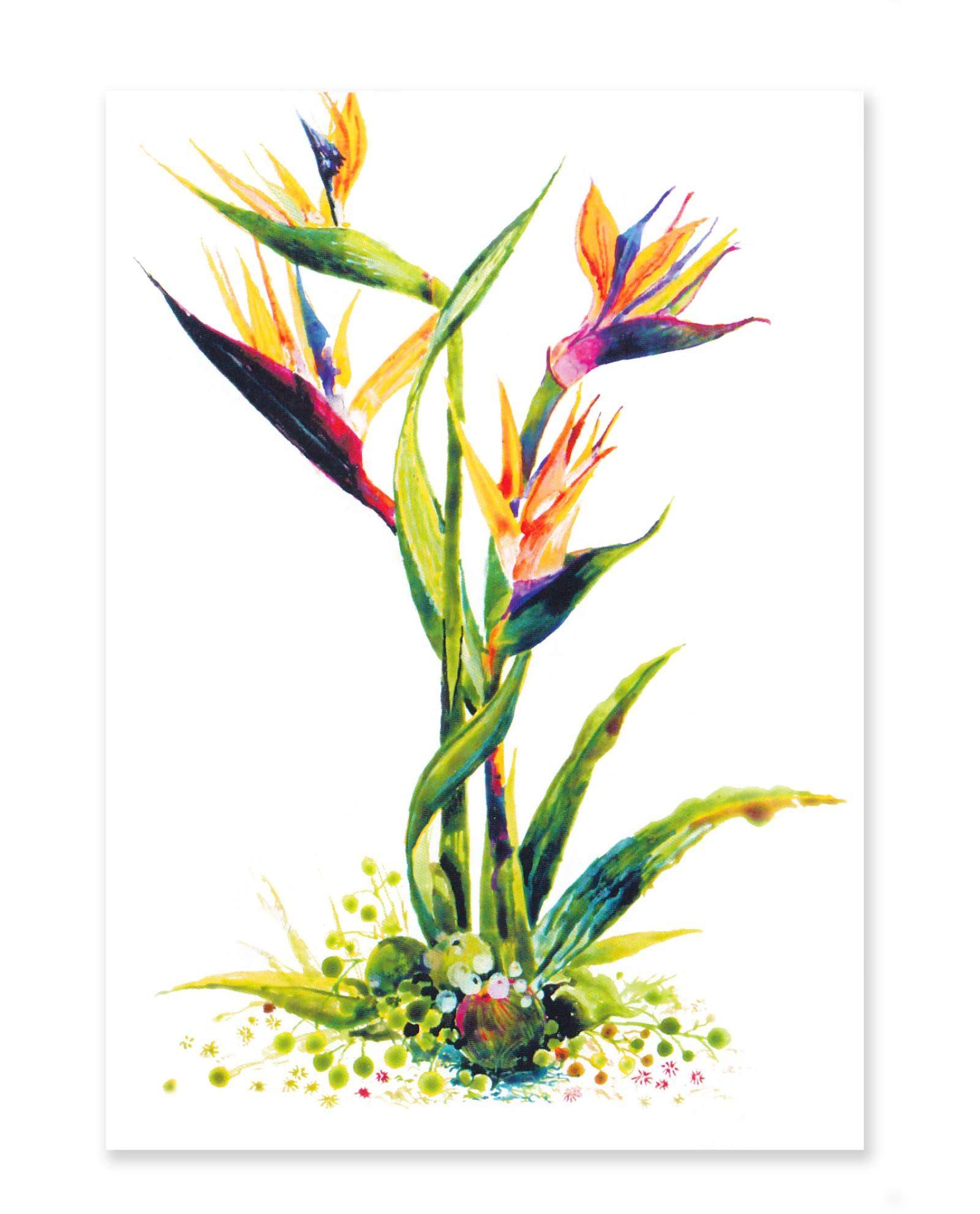 Vykort Ashish - gratulationskort, hälsning, handmålat, indiskt konstnär